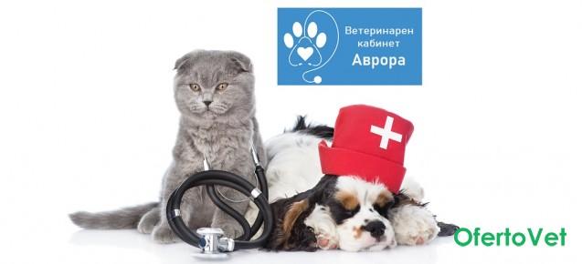 Пакет Грижа през годините за кучета и котки от Ветеринарен кабинет Аврора