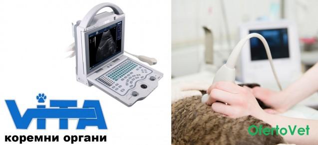 Ехографско ( ултразвуково ) изследване - преглед на всички коремни органи