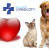 ЕКГ - електрокардиография от Ветеринарна клиника СИТИ