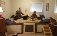 Двойка създава 4-метрово легло заради 5-те си котки и 2 кучета