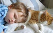Как влияе домашният любимец върху здравето на децата?