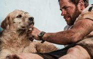 Куче завършва най-трудното си състезание в живота в търсене на нов дом.